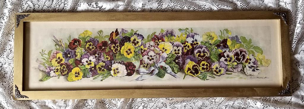 Art Print of Vintage Art Study of Pansies by Grace Barton Allen